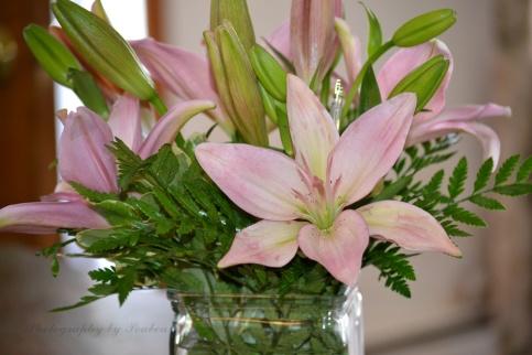 bday flower1