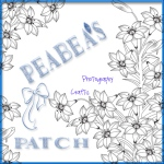peabea patch w ribbon