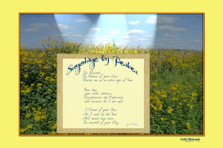 Sunshine by Peabea Texture Tuesday