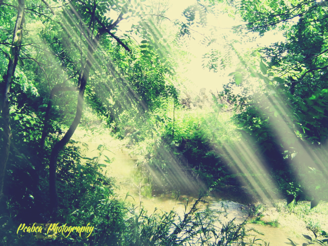 Sunshine Rays from coffee w TT texture