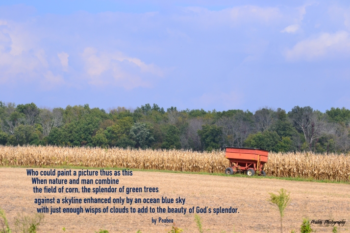 God's Splendor
