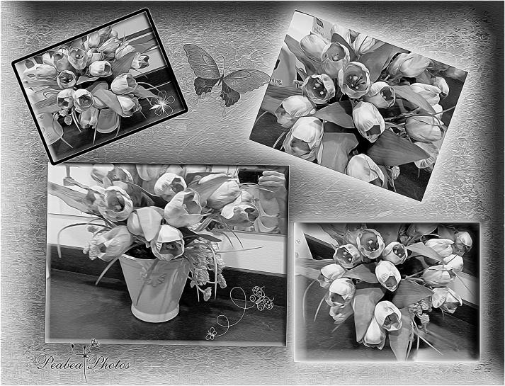 Floral Collage for Pixel Dust Art graphic artist version