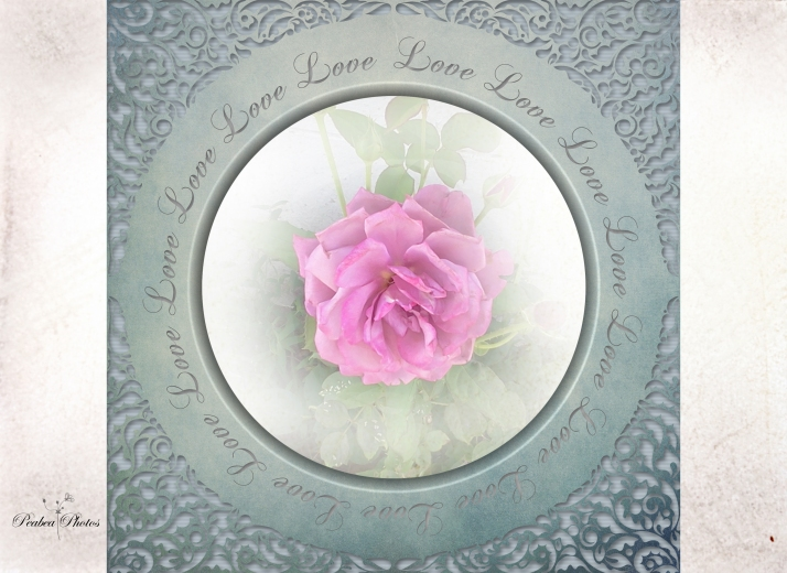Floral Love 5-1-14