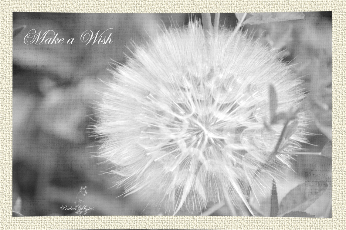 Make a Wish with frame