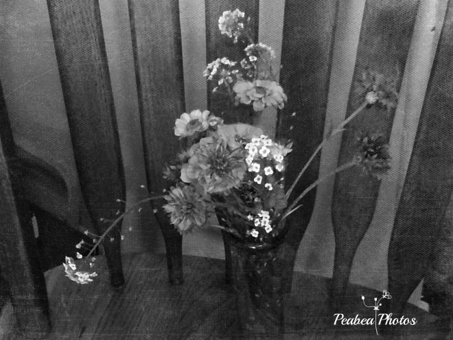 Flowers bw for bw Wednesday
