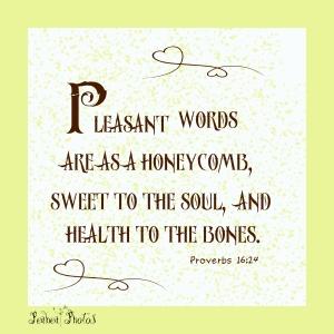 Proverbs 16 24