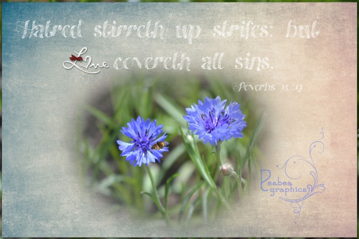 Proverbs 10 12 w texture for TT