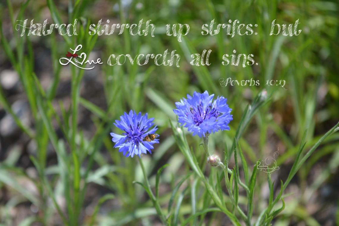 Proverbs 10 12