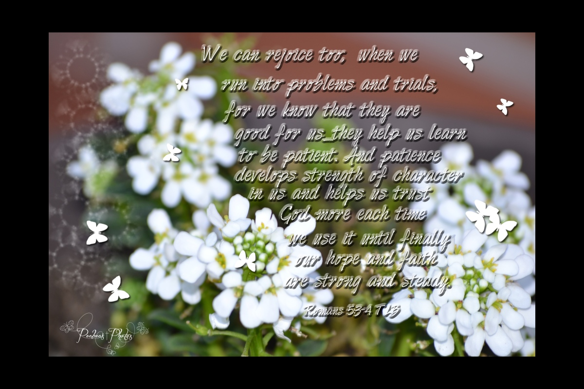 Romans 5 3-4
