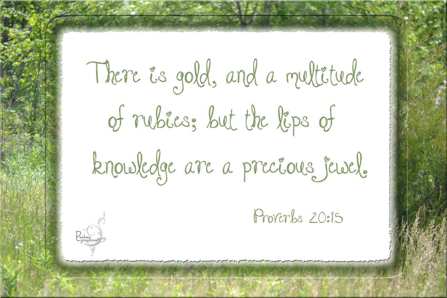 Proverbs 20 15