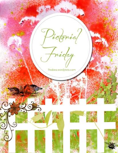 Pictorial Friday logo w website
