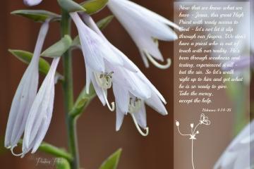 Hebrews 4 14-16
