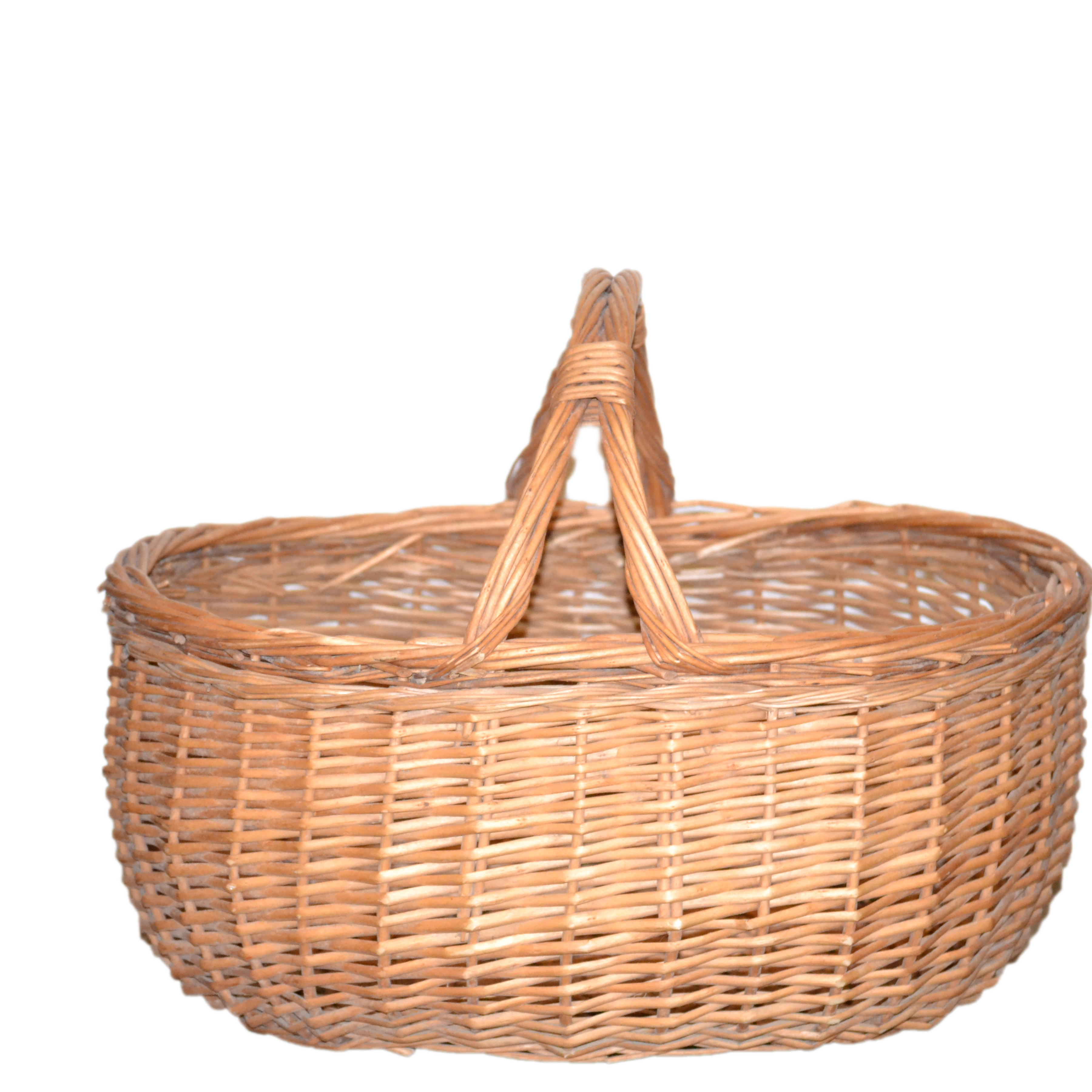 Flower in a basket