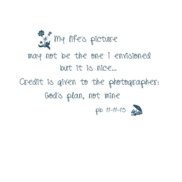 pb_mylifepicture brush