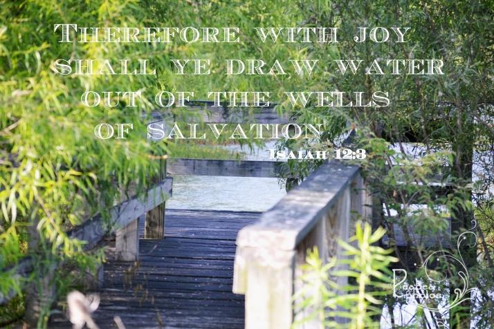isaiah-12-3-for-scripture-n-snapshot
