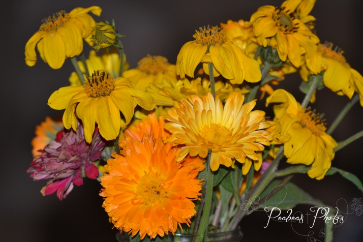 vase-road-flowers-for-pictorial