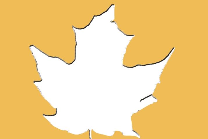 leaf-frame-clipping-mask