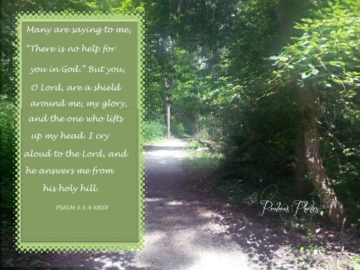 psalm-3-3-4