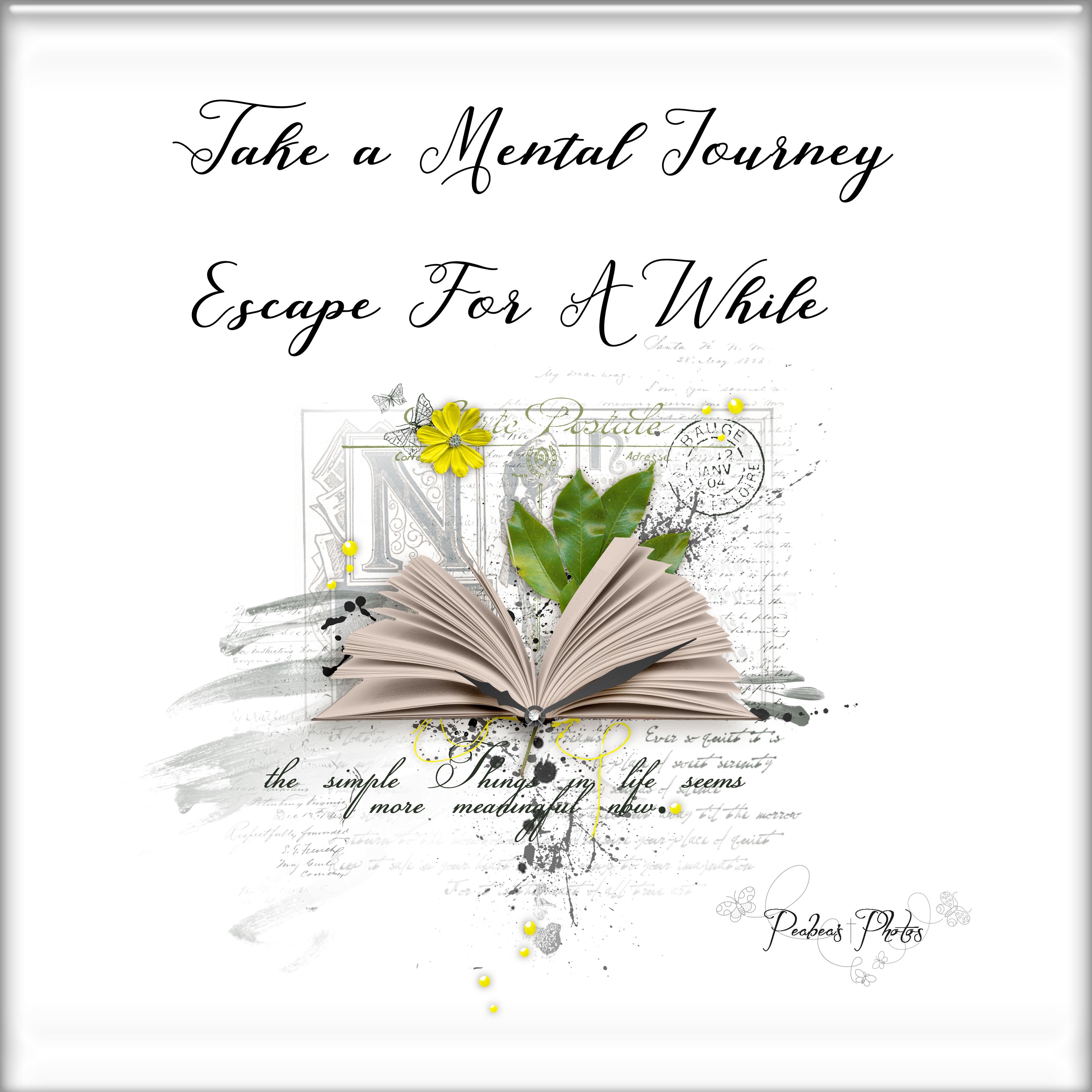 Take a Mental Journey
